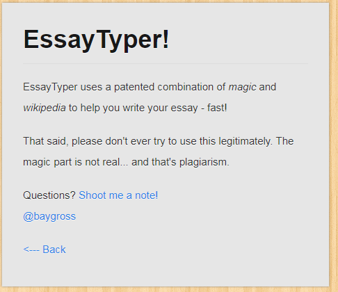 essay typer review